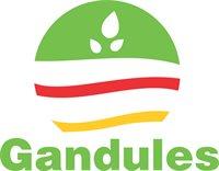 Gandules Inc. SAC.