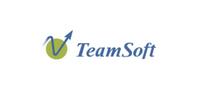 TeamSoft  S.A.C.