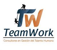 TEAM WORK Consultores Perú SAC