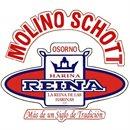 Molinera Schott - Osorno