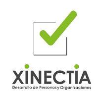 Xinectia Consultoría de negocios