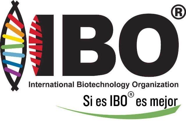 IBO s.a.