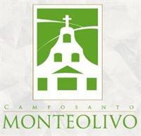 Monteolivo / Jardines del Valle