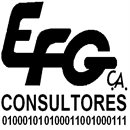 EFG CONSULTORES, C.A