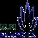 GRUPO INELECPRO C.A