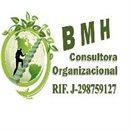 bmh consultora organizacional
