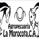 Agropecuaria la Morocota