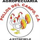 AGROPECUARIA POLLOS DEL CAMPO C.A