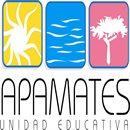 Instituto Educativo Los Apamates