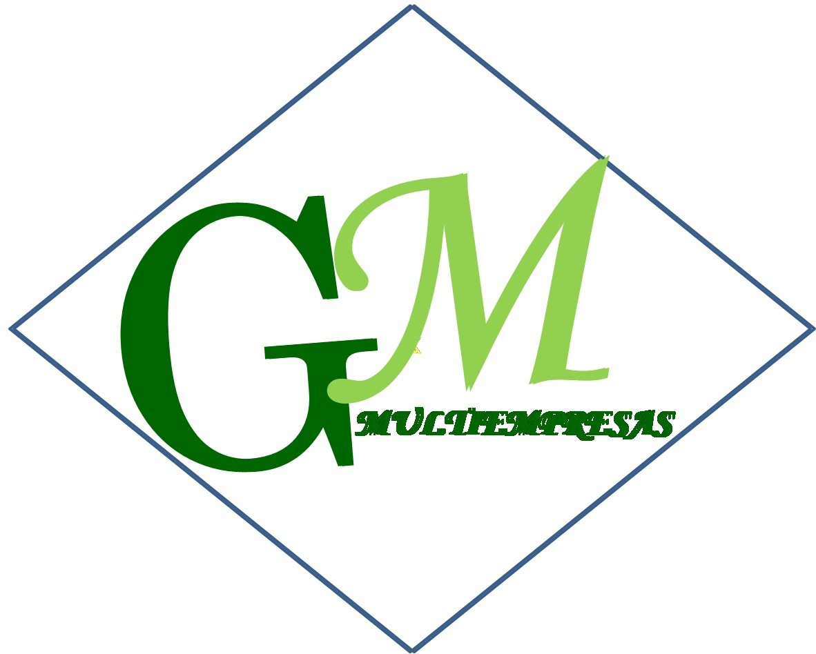 Multiempresas GM c,a
