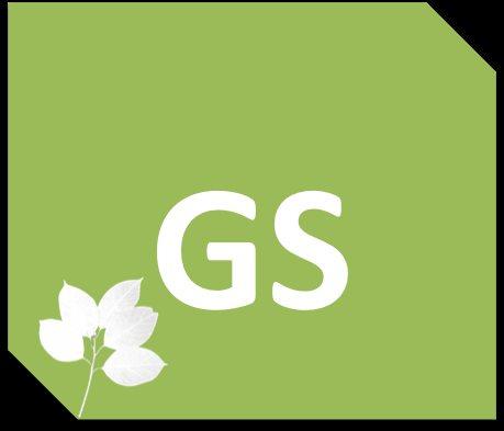 GigaSalud