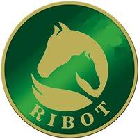 CENTRO HIPICO RIBOT CA
