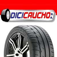 DICICAUCHO, S.A.