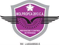 MOLPROPCA 2013, C.A.