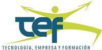 TEF Tecnología, Empresa y Formación