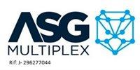 ASG MULTIPLEX C.A