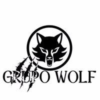 GRUPOWOLF II C.A.