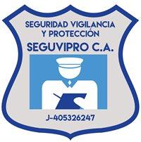 SEGUVIPRO C.A.
