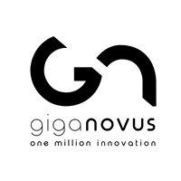 GIGANOVUS VE, C.A