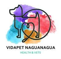 Vidapet Naguanagua