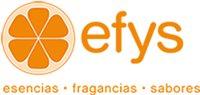 Corporacion Efys, C.A.