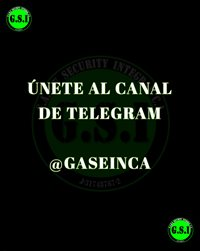 G.A.M.E SECURITY INTEGRAL C.A
