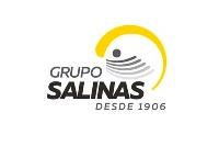 Grupo Salinas de Guatemala